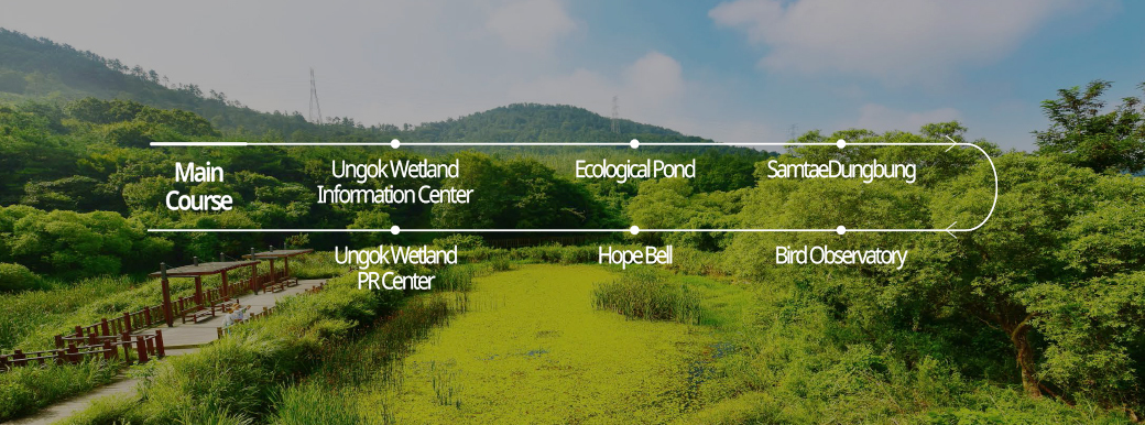 "<span>Gochang je 1 gil</span><br>Ungok Wetland Ecological Path Course 1|""Ungok Wetland"", where you can feel great nature, was created by reviving all kinds of animals and plants in the place of Dalanginnon..."
